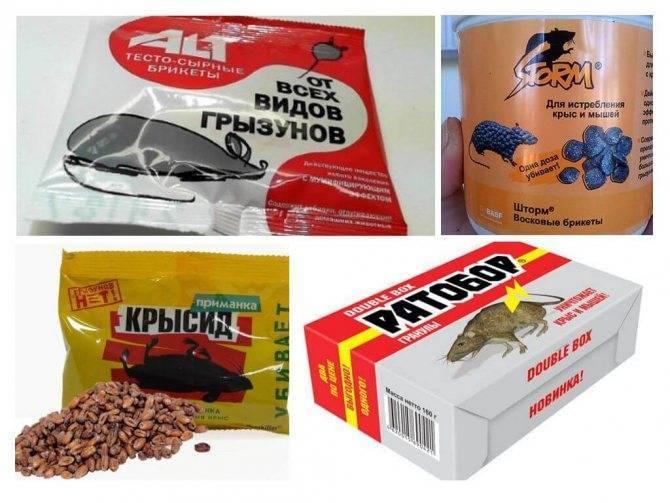 Смертельная доза крысиного яда для человека