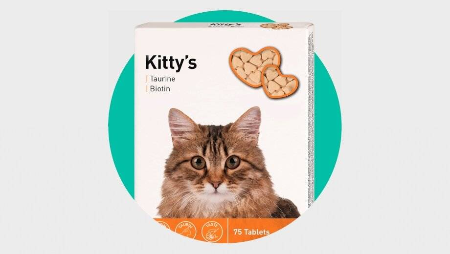 Клещи у кошек: что делать? симптомы, как вытащить и защитить от укусов