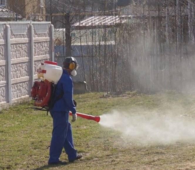 Как быстро избавиться от надоедливых комаров на дачном участке