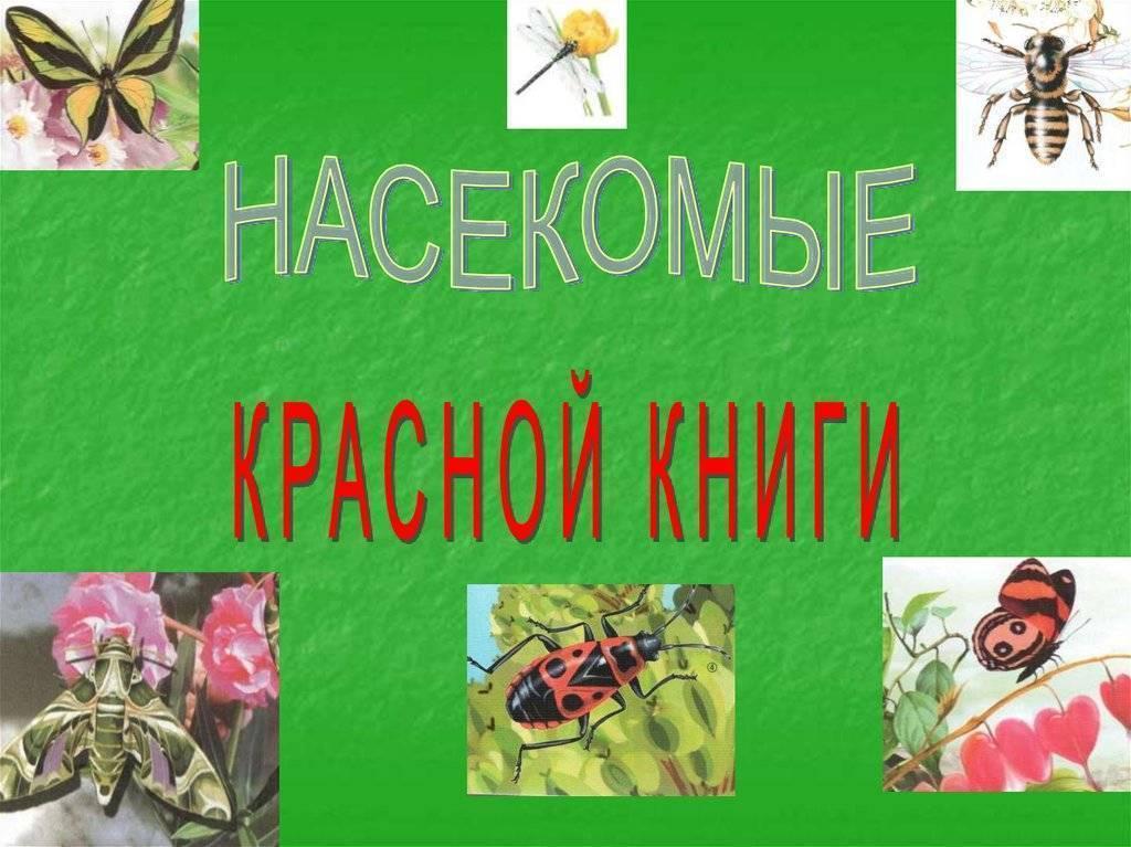 Официальный сайт редакции газеты «сельский труженик»