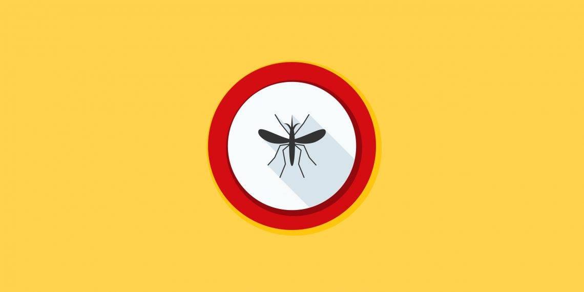 От укуса комара зуд, покраснение и отек – что делать?