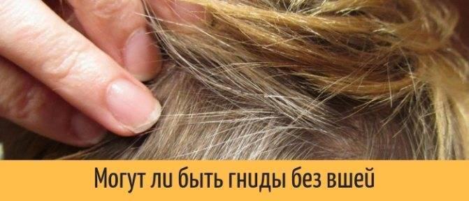Можно ли вывести вшей и гнид дихлофосом
