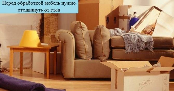 Средства от клопов «чистый дом»: формы выпуска и особенности применения