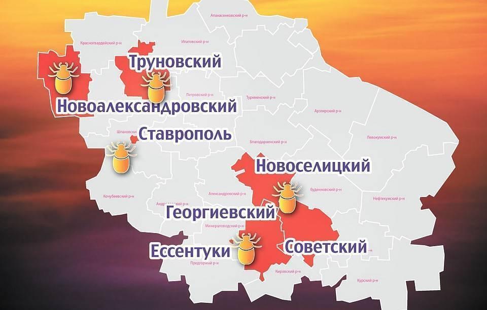 Клещи в Москве: опасные районы города на карте