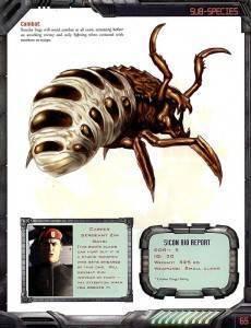 Трубковерт – жук с уникальными способностями