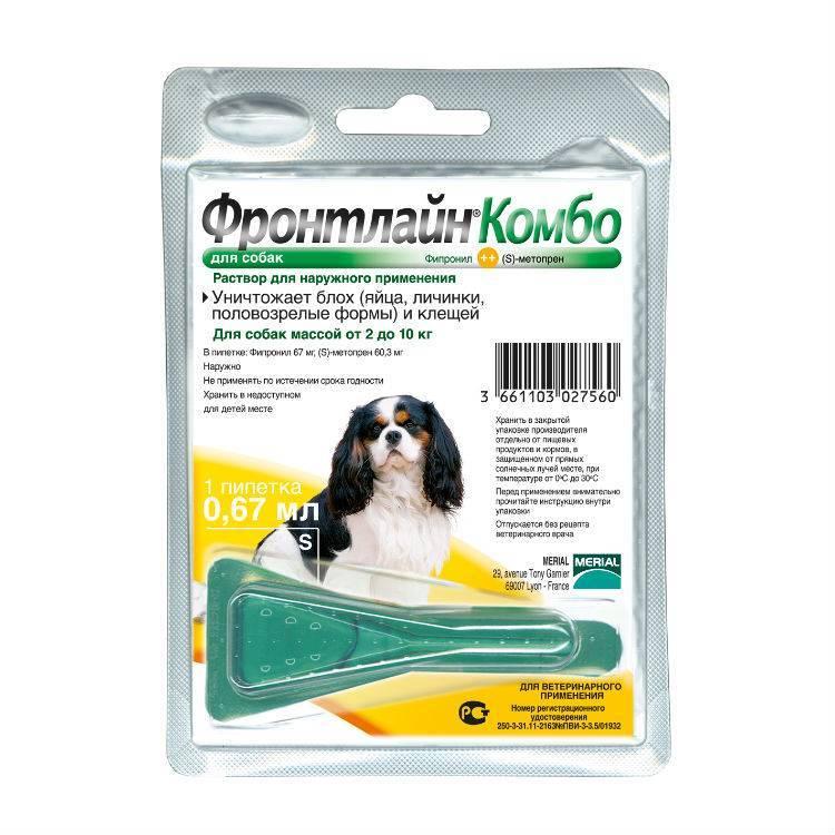 Фронтлайн – средство для обработки кошек и собак от паразитов