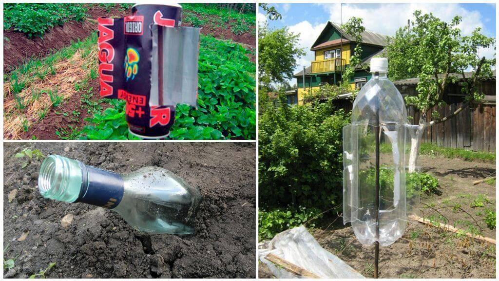Как бороться с землеройками на садовом участке?