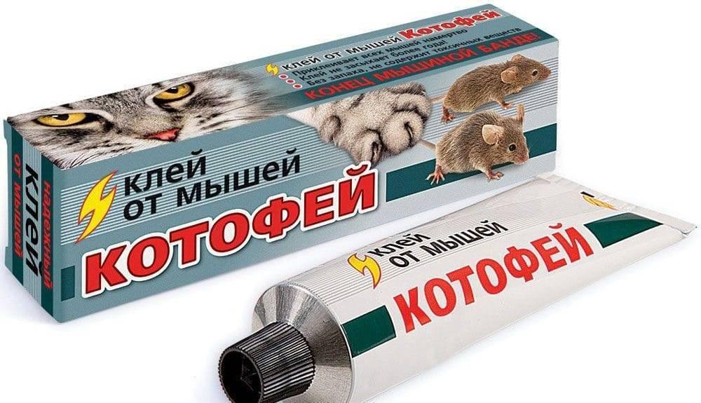 Клей для мышей: чем и как отмыть и оттереть с разных поверхностей