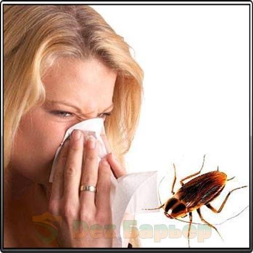 Какие болезни переносят тараканы