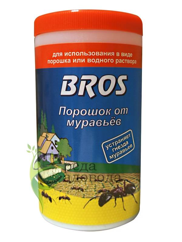 10 эффективных способов борьбы с муравьями в теплице