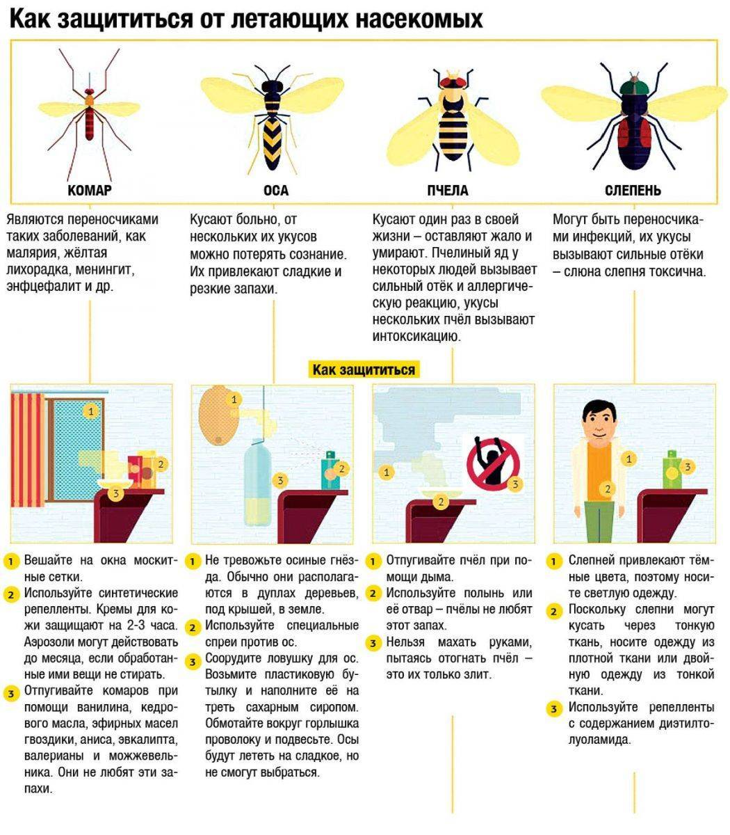 Кто умирает после укуса пчела или оса