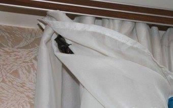 Что делать если летучая мышь залетела в квартиру?