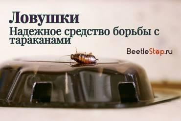 Выбираем гель от тараканов