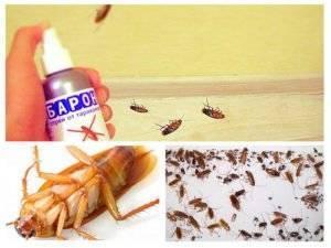 Спрей барон от тараканов отзывы