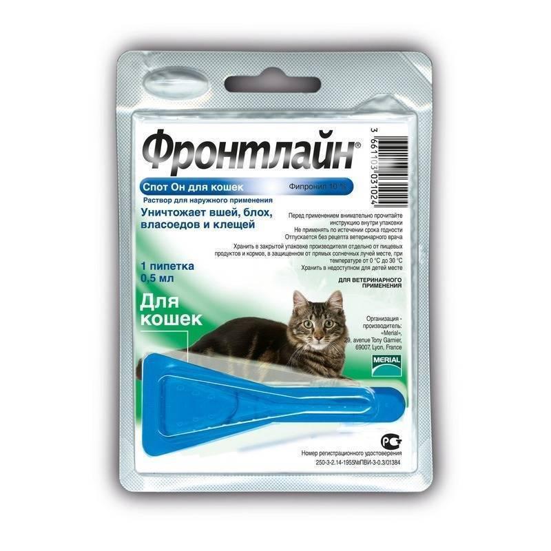 Фронтлайн для кошек и котов