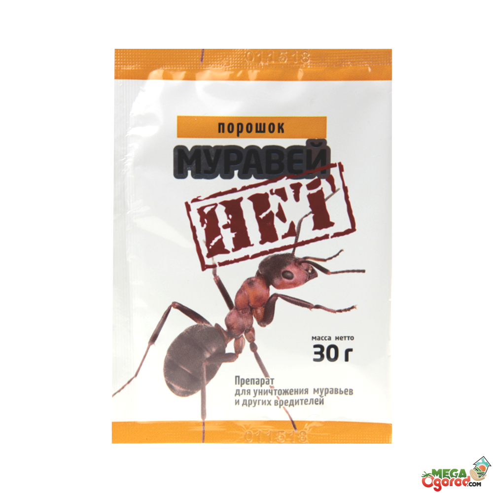 20 способов борьбы с муравьями в частном доме и квартире