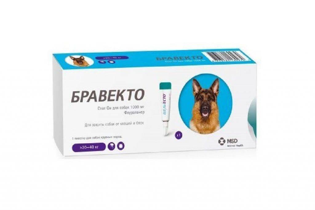 Жевательные таблетки бравекто для собак от блох и клещей