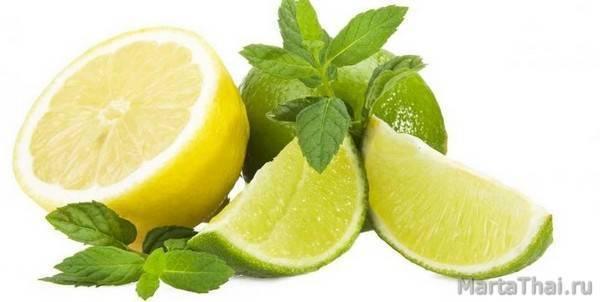 Симптомы, признаки и лечение эффективное демодекоза на лице