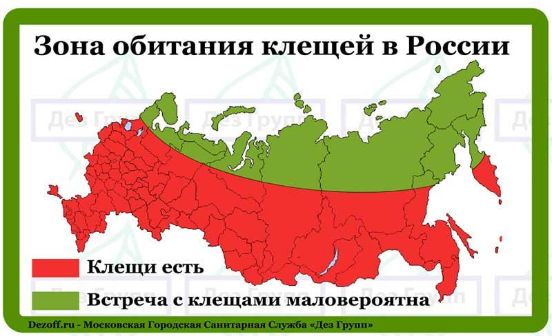 Откуда появились клещи в россии и где они водятся?