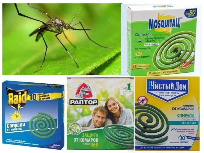Принцип работы спирали от комаров, инструкция по применению. как выбрать спираль от комаров